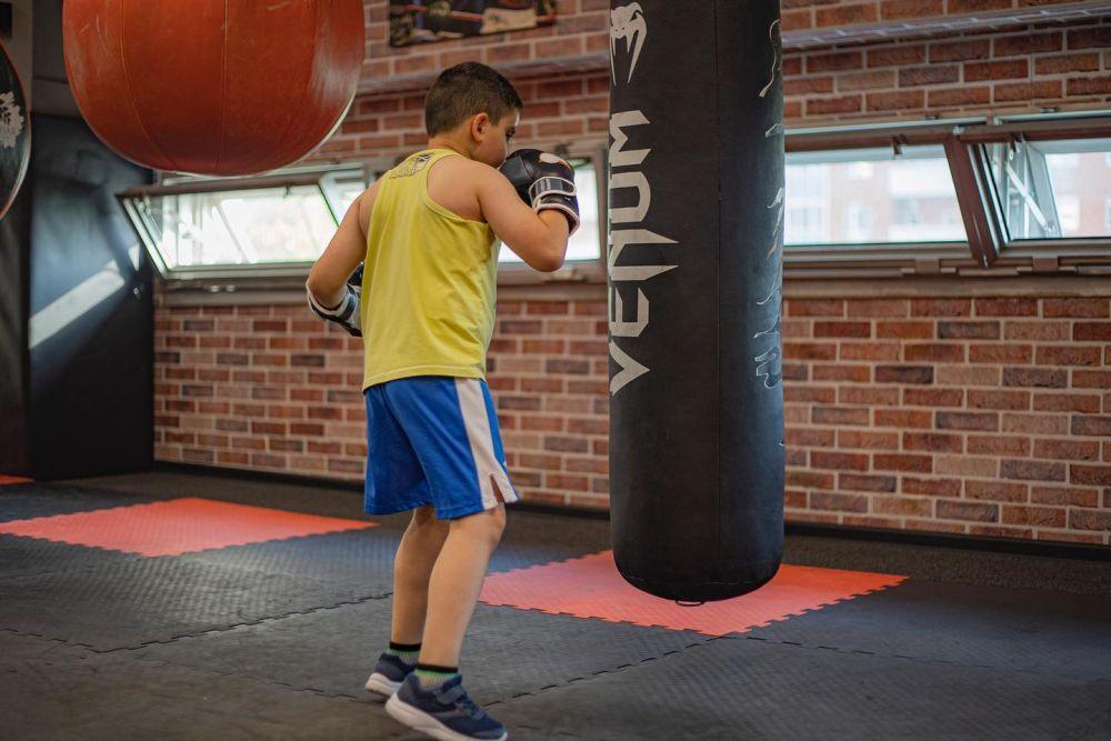 Методика обучения боксу от новичка до спортсмена